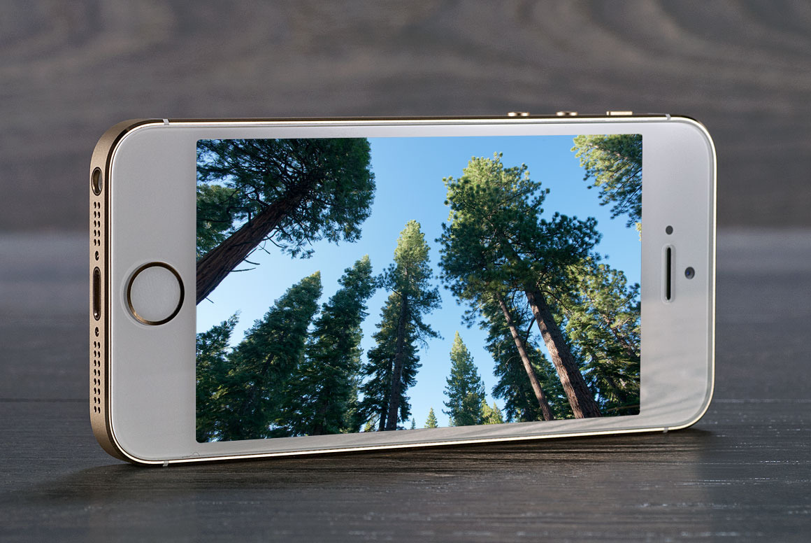 iPhone 5S : date de sortie, photos, dernières rumeurs